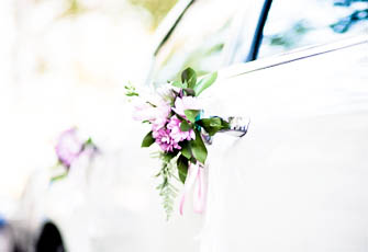 WEDDING TRANSFERS